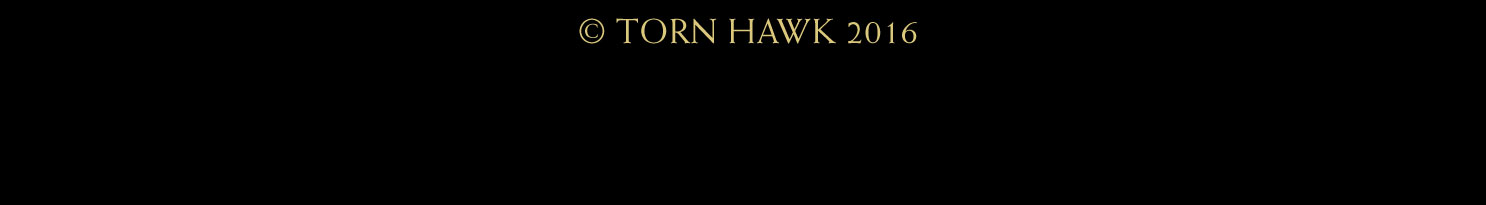 TORN-HAWK-SITE-040316_COMP_30